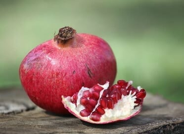 Pomegranate showing the pericarp and the mesocarp